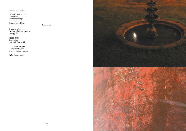 Extrait du livre Le sang des ruines, de Chantal Ringuet